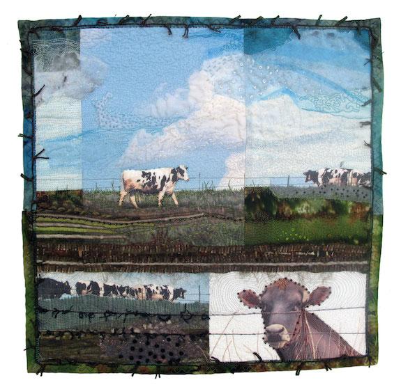 How Now Cow, Jill Kerttula